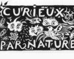logo curieux par nature